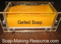 gelled annatto seed soap