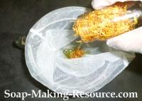 Filtering Out the Calendula Petals