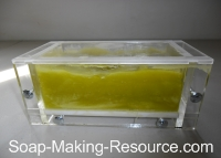Spirulina Soap Going through Gel Phase
