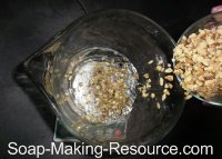 Pouring Walnuts into Water